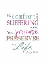 PSA199 502 160x225 Comfort in Suffering? Lisas Life Verse as a Printable