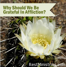 grateful Why Should We Be Grateful In Affliction?