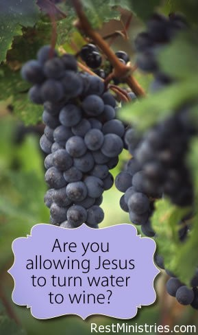 Allowing Jesus to Turn Water into Wine