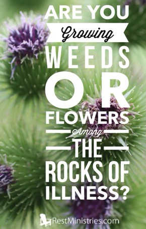 Are You Growing Weeds or Flowers Among Rocks of Illness?