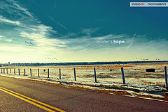 Devotion: Hope is More Than Just a Feeling, Despite Our Illness' Disappointments